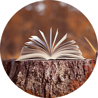 a book on a tree