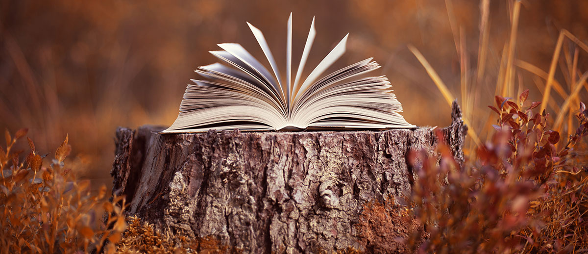 results -- book on a tree